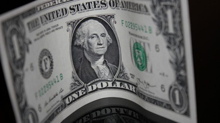 money again (palomacruz.com)